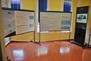 imagen-del-punto-de-informacion-de-red-electrica-espana-en-las-oficinas-municipales-de-arguineguin-3